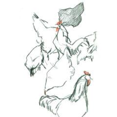 Hühnerskizzen