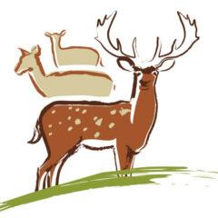 Logozeichen für Direktvermarkter